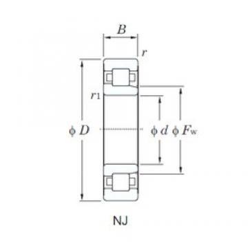 220 mm x 400 mm x 108 mm  KOYO NJ2244 cylindrical roller bearings