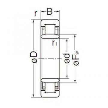25 mm x 62 mm x 17 mm  NACHI NU305EG cylindrical roller bearings