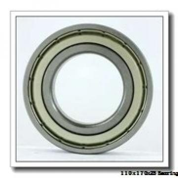 110 mm x 170 mm x 28 mm  NKE 6022-2Z-NR deep groove ball bearings